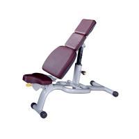 Strength equipment  Adjustable dumbbell exercise bench