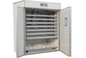 China Automatic poultry egg incubator on sale