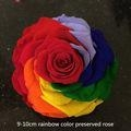 China 2016 best selling item natural rainbow color large preserved roses flowers on sale
