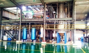 China 50TPD rapeseed oil refining,30TPD sunflower oil/corn oil dewaxing production line on sale