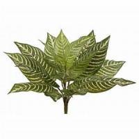 "11"" Green Yellow Artificial Zebra Plant"