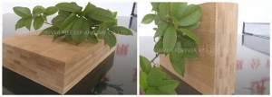 China The Horizontal Pressing Of Bamboo Board Panels For Kinds Of Furniture on sale