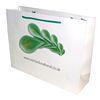China Gloss Laminated Paper Carrier Bag LDPEGloss Laminated Paper Carrier Bag on sale