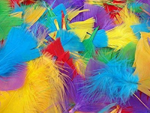 China 250+ Assorted Coloured Feathers Art Craft Collage Hats Costume Millinery on sale