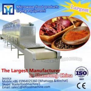 China Vacuum pineapple freeze dryer Fruit Drying Machine vegetable and fruit freezer dryer on sale