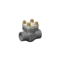 FORGED STEEL LIFT CHECK VALVE W77P