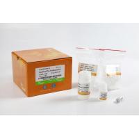 China Nucleic Acid Purification Catalog Number:ER701-01 on sale