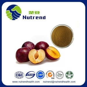 China Fruit and Vegetable Powder Plum Fruit Powder on sale