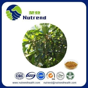 China Standard Herb Extract Oliver Leaf Extract on sale