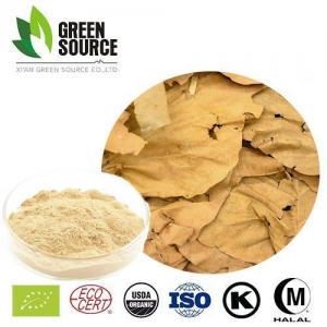 China Herbal Extract Powder Birch Extract on sale