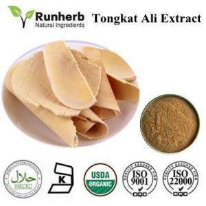 China Hot Sale Herbal Extract on sale