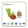 China Buckwheat Extract for sale