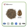 China Burdock Root Extract Herb Source: Arctiin Arctium lappa L for sale