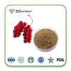 China Schisandra Chinensis for sale