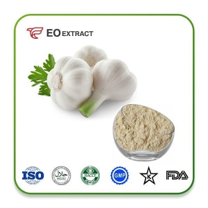 China Garlic Powder Production Method: AD(Hot Air Drying) on sale