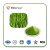 China Barley Grass Powder Production Method:AD(Hot Air Drying) for sale