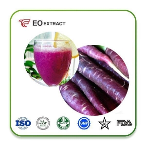 China Purple Carrot Juice Concentrate Prodcut PurpleCarrotJuiceConcentrate on sale