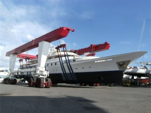 China Boat Travel Lift Crane on sale