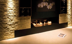 China Ethanol Fireplaces Ethanol Fireplace Inserts on sale