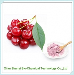 China Cherry Juice Powder | Natural Organic Cherry Juice Powder on sale