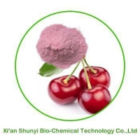 China Acerola Cherry Powder| Pure Organic Acerola Cherry Powder on sale