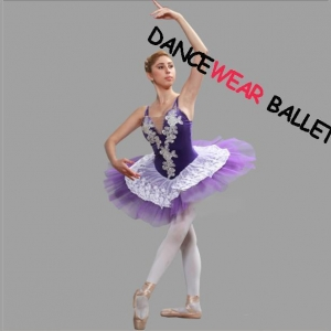 China Professional Fairy Embroidery Performance Dance Ballet Tutu Costume on sale