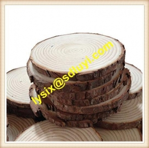China Unpainted Natural Blank Wood Slices on sale