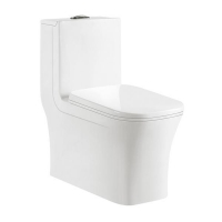 China Washroom ceramic toilet WC 9005 on sale