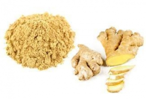 China Organic Whole Ginger Root Extract Powder on sale