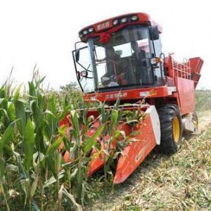 China Maize Combine Harvester Machine on sale
