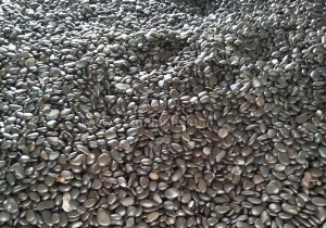 China Black pebbles on sale