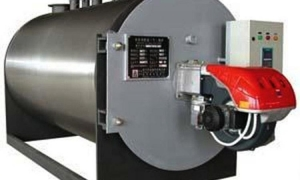 China Natural gas fired Steam Boiler hot sale in Vietnam Danang on sale