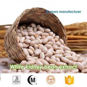 China natural white kidney bean Extract Phaseolin 2% on sale