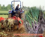 Tractor Catalogue Garlic Harvester
