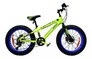 China Bicycle 20 FAT BIKE 7-SPEED on sale