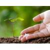 China Metal products Nitrogen Fertilizers Agricultural Granular 46% Urea for sale
