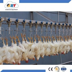 China Chicken Slaughterhouse Machine Slaughtering And Plucking on sale