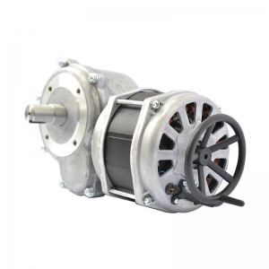 China Ac worm gear motor on sale