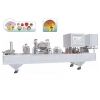China SYCFD-6 automatic single sheet sealing machine for sale