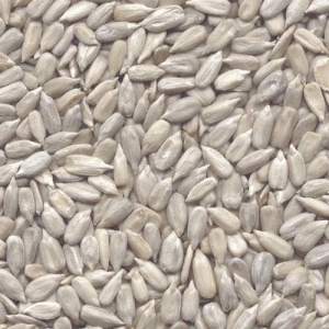Quality Kernels Sunflowerseed Kernel(Confectionary Grade) for sale