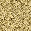 China Kernels Pinenut Kernel (Yunnan Origin) for sale