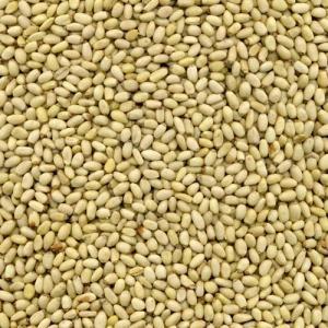 Quality Kernels Pinenut Kernel (Yunnan Origin) for sale
