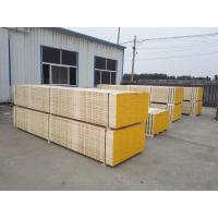 China lvl scaffold boards/planks on sale