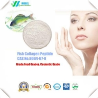 Amino Acids And Vitamin Cosmetic Ingredients Fish Collagen Peptide Powder