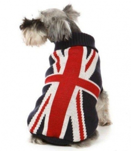 China Pet accessories dog apparel british flat pattern sweater fashionable hot pet dog clothes on sale