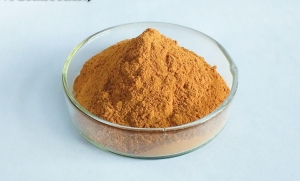 China Licorice Products L16. Licorice Extract Sweeter on sale