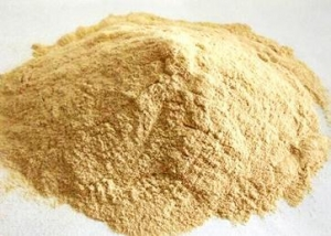 China FOOD ADDITIVES XANTHAN-GUM TECH/FOOD on sale