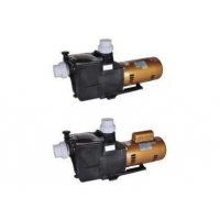 China Swimming Pool Water Electric Motor Pump on sale