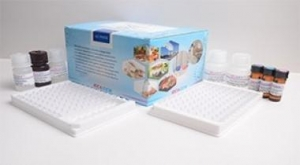 China Ceftiofur ELISA Test Kit on sale