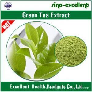 China Natural Green Tea Txtract Powder on sale